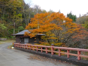 Otakijuku in autumn